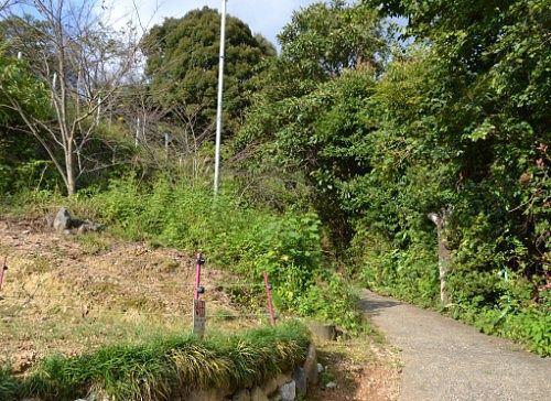 急坂な登山道