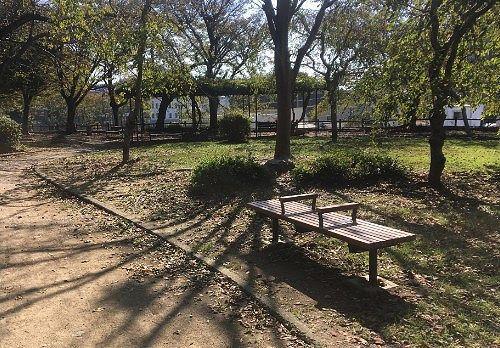 浜松城公園の様子