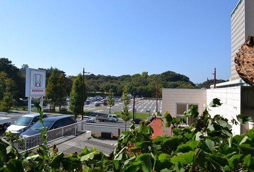東照宮から浜松城公園のほうの見晴らし