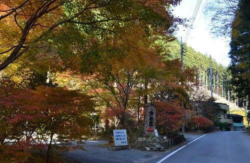 清風園の紅葉