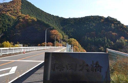 梅田大橋の紅葉