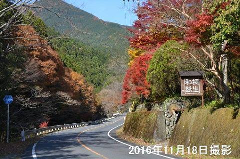 桐生川沿いの道路の様子