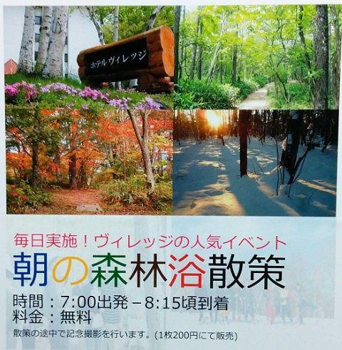 朝の森林浴散策ポスター