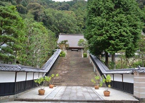 臨済寺石段の様子