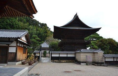 臨済寺の境内から山門を見る