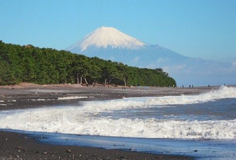 富士山が見える三保松原