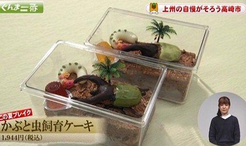 かぶと虫飼育ケーキ