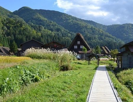 白川郷の合掌造りの家と田園風景