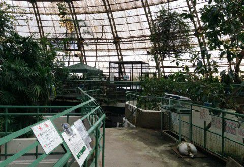 熱帯ドームの中の様子