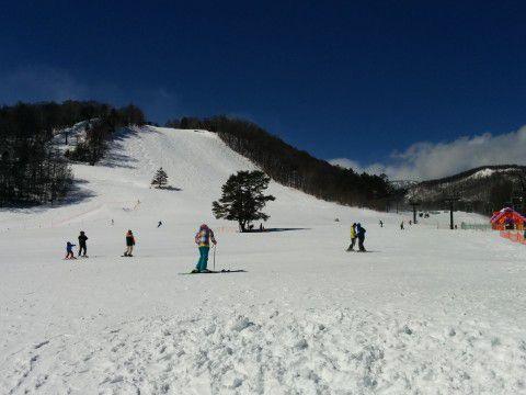 草津温泉スキー場の様子