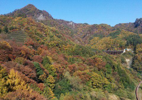 不動大橋から見た秋の紅葉してる山の景色