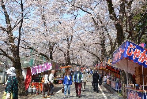 露店と桜ロード