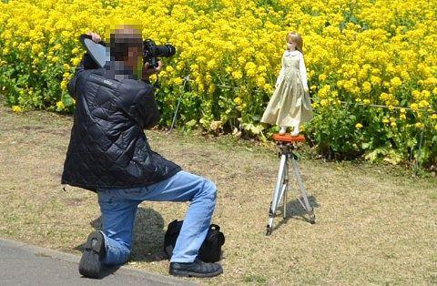 人形と花の写真