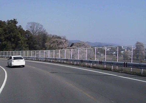国道353号線