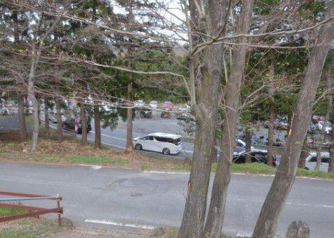 駐車待ちをしてる車の列