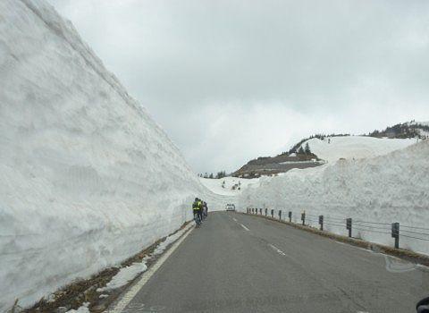 雪の回廊を走る自転車