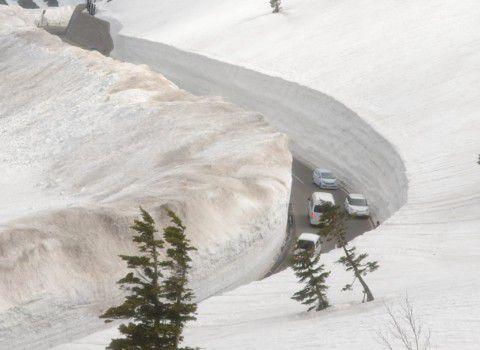 2017年開通日の雪の回廊