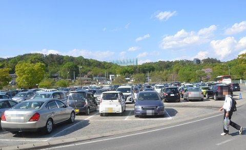 平日なのに満車の駐車場の様子