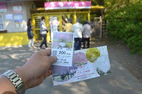 入園券とパンフレット