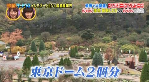 あしかがフラワーパークは東京ドーム2個分の広さ