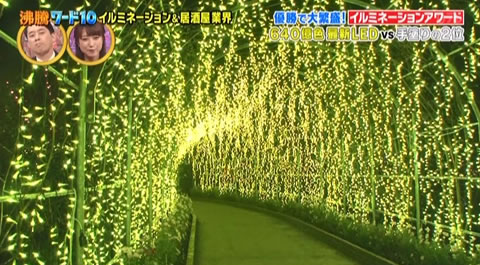 きばな藤イルミネーションのトンネル