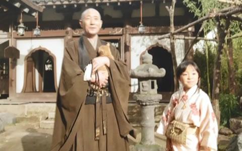 大河ドラマの中での龍潭寺のシーン