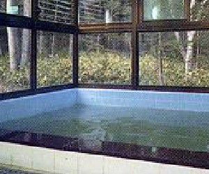 奥日光倶楽部 山の宿内湯