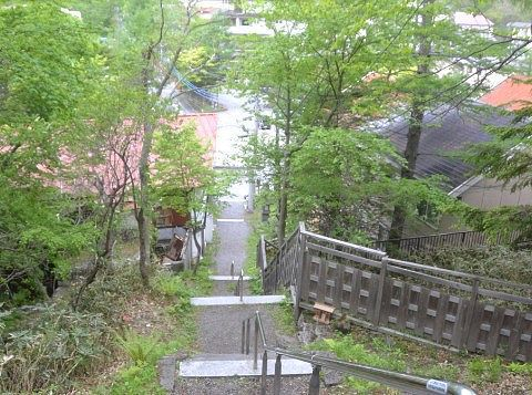 温泉神社から見た石段