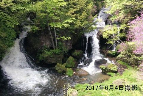 初夏の竜頭の滝の様子