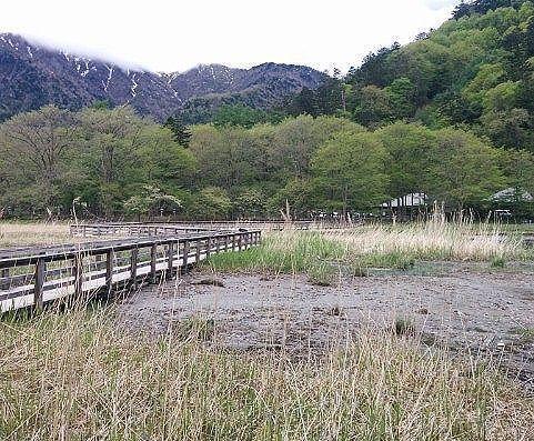 湯ノ平湿原