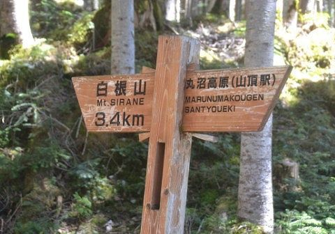 登山道の案内表示