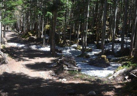 登山道にあった残雪