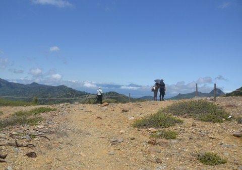 登山道脇の空き地