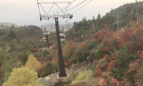 紅葉の中を上るロープウェイ
