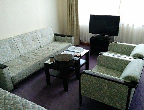 客室のソファやテレビ