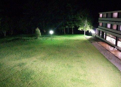 ライトアップされた中庭