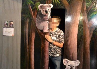 コアラの森のトリックアート
