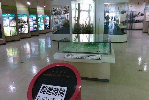 赤城山ビジターセンターの資料館の様子