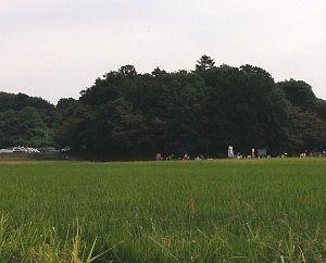 田んぼの奥に見えたかかし祭り会場