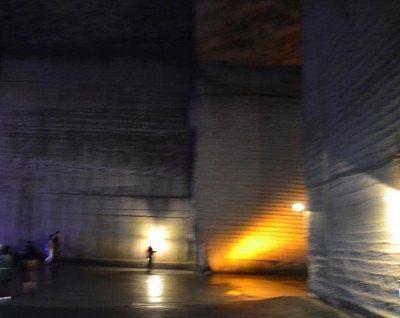 暗いかったから手ぶれが発生した写真