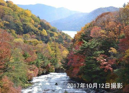 竜頭の滝上の紅葉