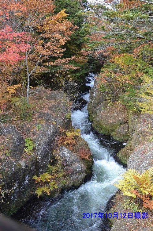 竜頭の滝上の橋の反対側の景色