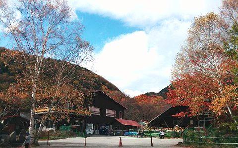秋の光徳牧場の様子