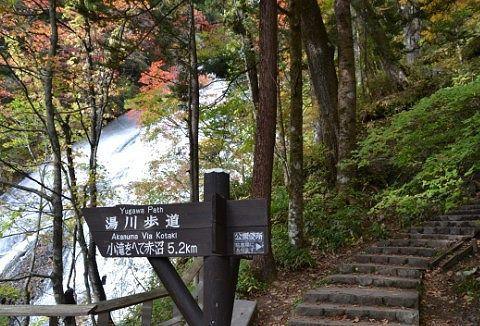 湯滝横も湯川歩道の様子