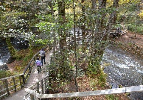 湯滝の下にある遊歩道