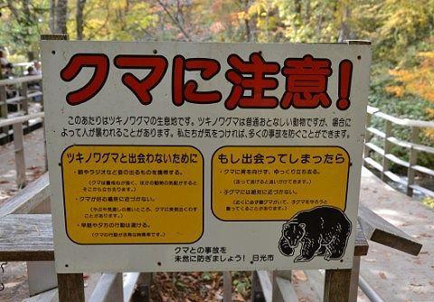 クマに注意の看板