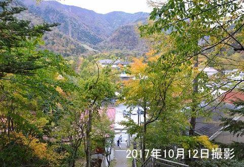 紅葉時期の境内からの景色