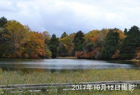 2017年湯ノ湖紅葉の様子