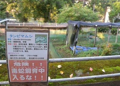 マムシのいる野外飼育場