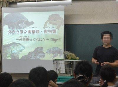 外来種についての講座